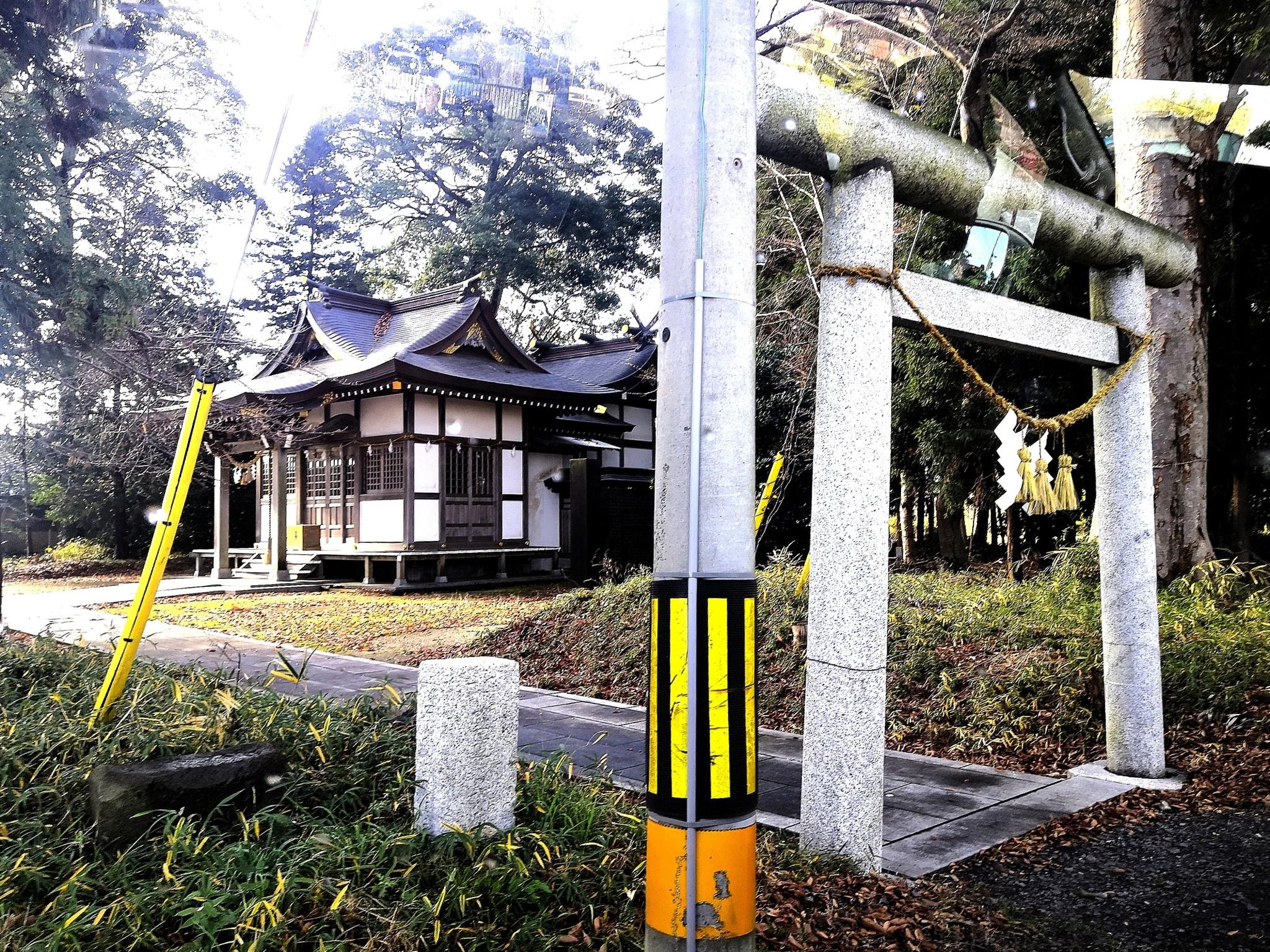 Обои двор, зонт, желтый. Разное foto 14